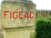 Slotsbesøg af Chateau Figeac Premier Grand Cru Classe, St. Emilion, torsdag den 12. november 2015 k. 18.30 i IDAs lokaler på Kalvebod Brygge 31-33